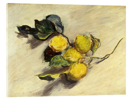 Acrylic glass  Branch a lemon tree - Claude Monet