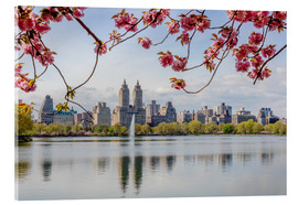 Acrylic print  Buildings reflected in lake with cherry flowers in spring, Central Park, New York, USA - Matteo Colombo