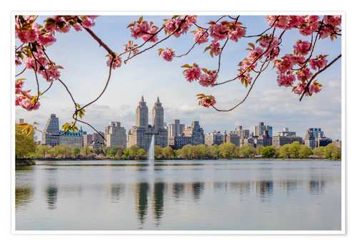 Poster Buildings reflected in lake with cherry flowers in spring, Central Park, New York, USA
