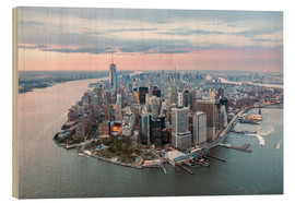 Wood  Aerial view of lower Manhattan with One World Trade Center at sunset, New York city, USA - Matteo Colombo