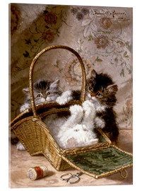 Acrylic glass  Young cats with a sewing basket - Henriette Ronner-Knip