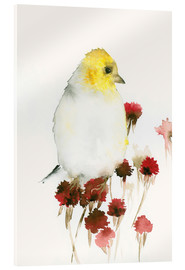 Acrylic print  Yellow Bird and Flowers - Dearpumpernickel