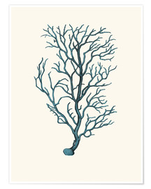 Poster coral blue