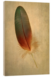 Wood  Green parrot feather - Jaroslaw Blaminsky