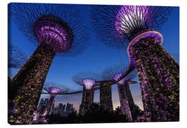 Canvas  Gardens by the Bay - Singapore - Thomas Klinder