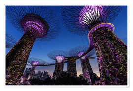 Thomas Klinder - Gardens by the Bay - Singapore