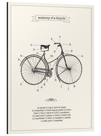 Alu-Dibond  Vintage parts of a Bicycle anatomy - Nory Glory Prints