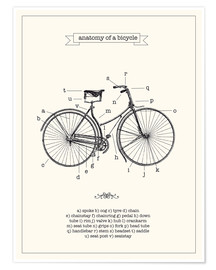 Poster  Vintage parts of a Bicycle anatomy - Nory Glory Prints