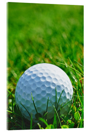 Acrylic print  Golf ball in the grass