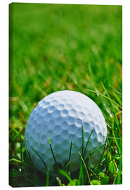 Canvas  Golf ball in the grass