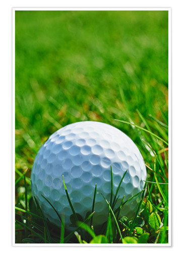 Premium poster Golf ball in the grass