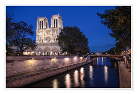 Premium poster Notre Dame at night, Paris