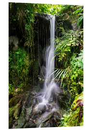 Foam board print  Waterfall in Harz - Dennis Stracke