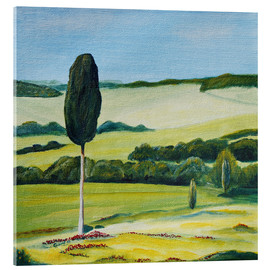 Acrylic glass  Lonely Cypress Tree on Terrapille Close to Pienza Tuscany - Christine Huwer