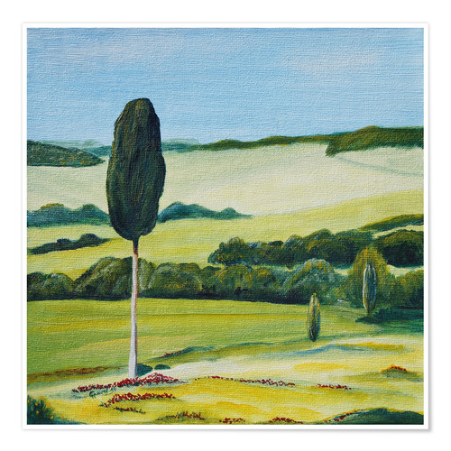 Premium poster Lonely Cypress Tree on Terrapille Close to Pienza Tuscany