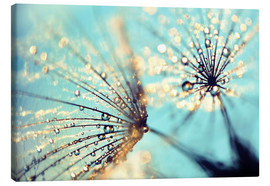 Canvas  Dandelion gold - Julia Delgado