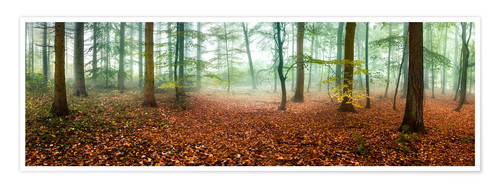 Premium poster Autumn forest panorama with red autumn leaves