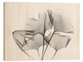 Wood print  Ginkgo plant leaves