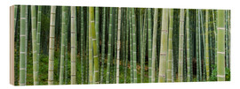 Wood print  Green bamboo forest in Kyoto, Japan - Jan Christopher Becke