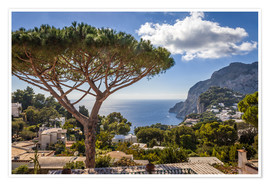 Premium poster  Dream island of Capri in the Gulf of Naples (Italy) - Christian Müringer