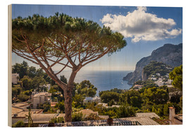 Wood print  Dream island of Capri in the Gulf of Naples (Italy) - Christian Müringer