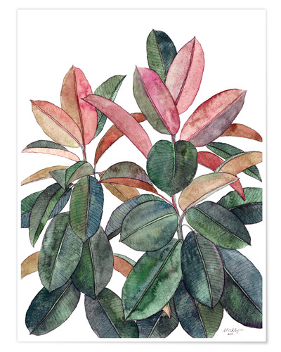 Poster Rubber Plant