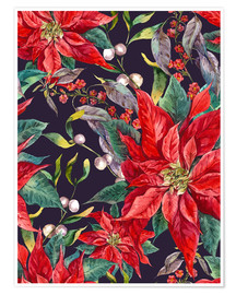 Premium poster  The Poinsettia