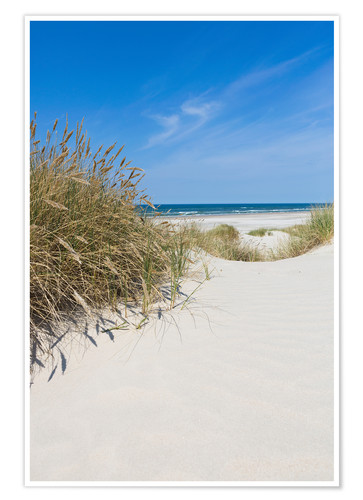 Premium poster Dunes and the sea