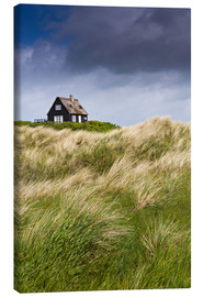 Canvas  Cottage in the dunes during storm