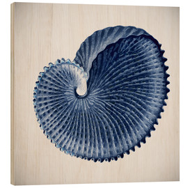 Wood print  Seashell - Mandy Reinmuth