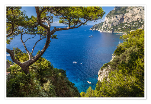Premium poster Wonderful sea view in Capri (Italy)