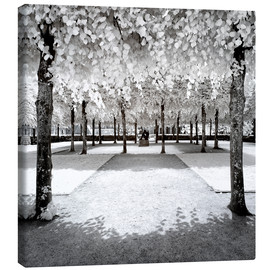 Canvas print  Infrared Frozen Forest - Philippe HUGONNARD