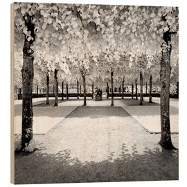 Wood print  Infrared Frozen Forest - Philippe HUGONNARD