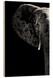 Wood print  Portrait of an elephant - Philippe HUGONNARD