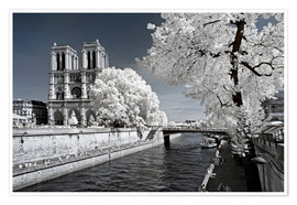 Premium poster Infrared - Notre Dame in Paris