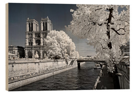 Wood  Another Look - Paris Notre Dame - Philippe HUGONNARD
