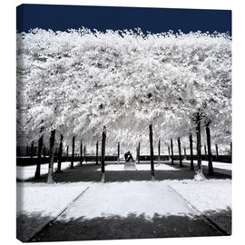 Canvas print  Infrared rime in the park - Philippe HUGONNARD