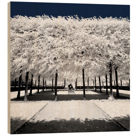 Wood print  Infrared rime in the park - Philippe HUGONNARD
