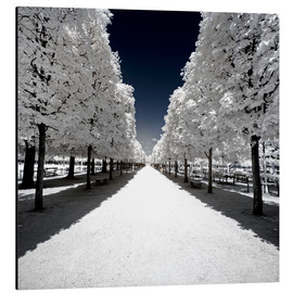 Alu-Dibond  Another Look - White alley - Philippe HUGONNARD