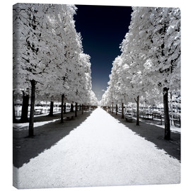 Canvas print  Another Look - White alley - Philippe HUGONNARD