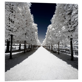 Foam board print  Infrared Park Walk in Paris - Philippe HUGONNARD