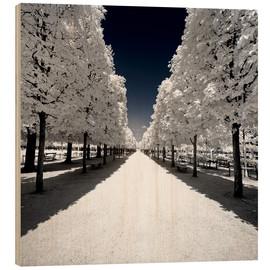 Philippe HUGONNARD - Another Look - White alley