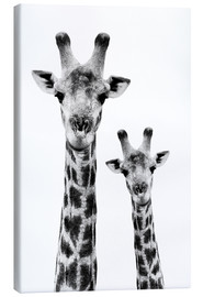 Canvas print  Giraffe and Baby - Philippe HUGONNARD