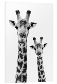 Foam board print  Giraffe and Baby - Philippe HUGONNARD