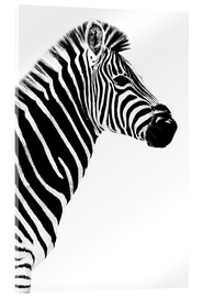 Acrylic glass  Safari Profile Collection - Zebra White Edition III - Philippe HUGONNARD