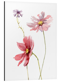 Alu-Dibond  Cosmos flower and cornflower - Verbrugge Watercolor