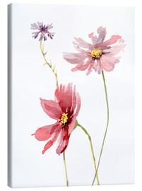 Canvas  Cosmos flower and Cornflower - Verbrugge Watercolor