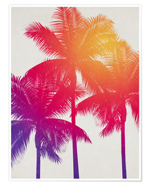 Premium poster palm tree colours