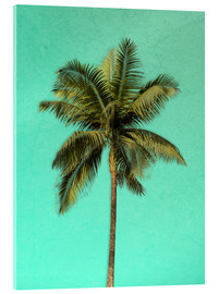 Acrylic print  Palm tree - Alex Saberi