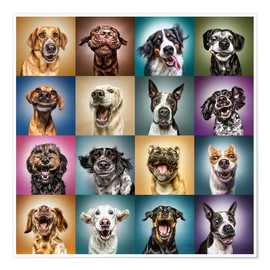 Poster  Funny (Dog) Faces - Manuela Kulpa